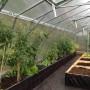 Växthus 40 m² – kanalplast