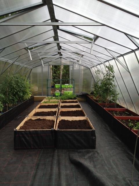 64 m² växthus polykarbonat