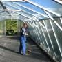 64 m² växthus inifrån